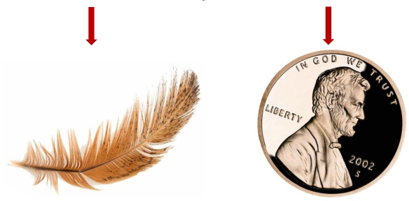 Feather & Penny Falling_1